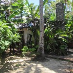 Lomalagi Bure